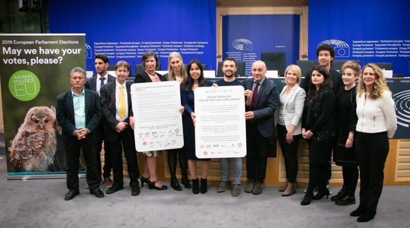 Firmato ieri a bruxelles il primo manifesto dei partiti for Parlamento ieri